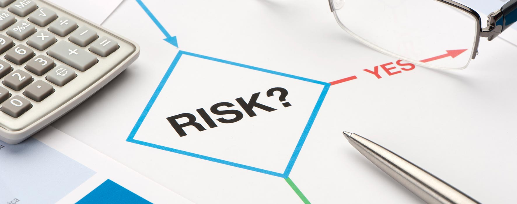 risk management large